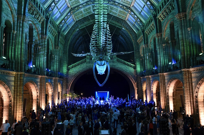 VIP launch of Hintze Hall 13th July 2017 & NHM unveils Hintze Hallu0027s new blue whale skeleton - Fieldmarketing azcodes.com